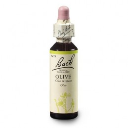 Olive 20ml